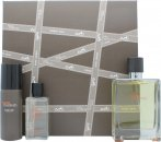 Hermes Terre D'Hermes Set de Regalo 2 x 50ml EDT