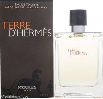 Hermes Terre D'Hermes Eau De Toilette 100ml Vaporizador